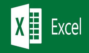 Microsoft Excel Video # 1